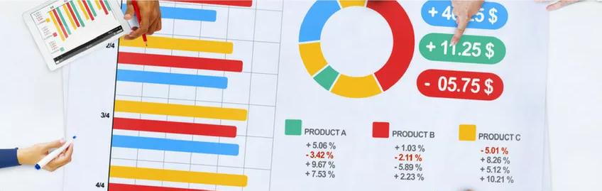 metagora - gestione crescita - gestione economica finanziaria